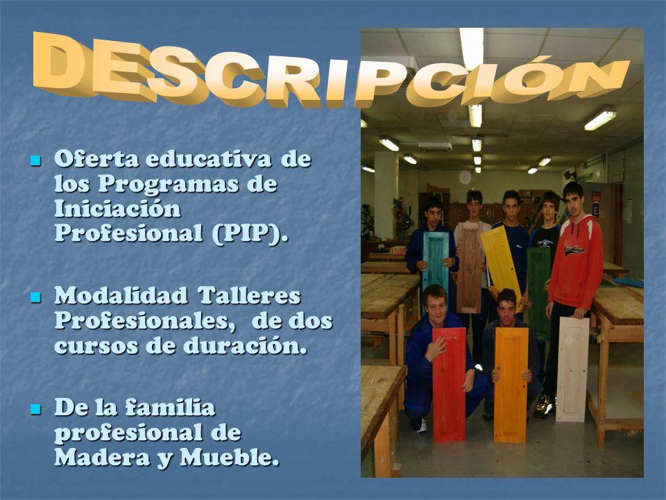 DESCRIPCIÓN Oferta educativa de los Programas de Iniciación Profesional (PIP). Modalidad Talleres Profesionales, de dos cursos de duración.