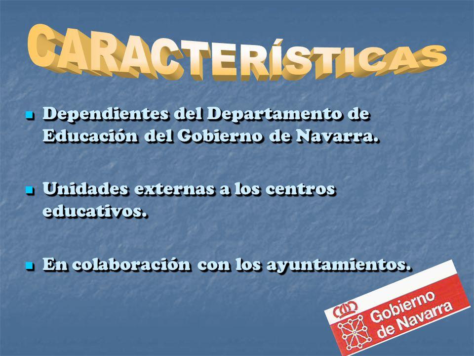 Dependientes del Departamento de Educación del Gobierno de Navarra.