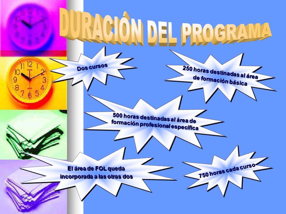 DURACIÓN DEL PROGRAMA Dos cursos 250 horas destinadas al área