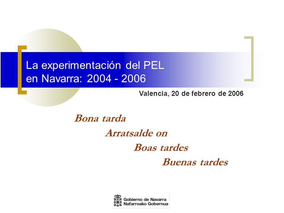 La experimentación del PEL en Navarra: 2004 - 2006