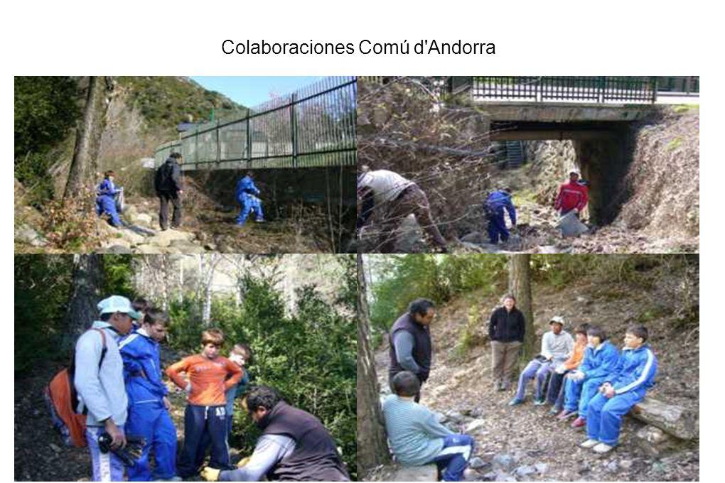 Colaboraciones Comú d Andorra