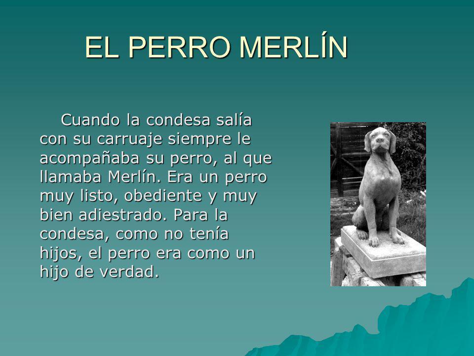EL PERRO MERLÍN