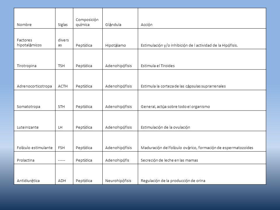 Nombre Siglas. Composición química. Glándula. Acción. Factores hipotalámicos. diversas. Peptídica.