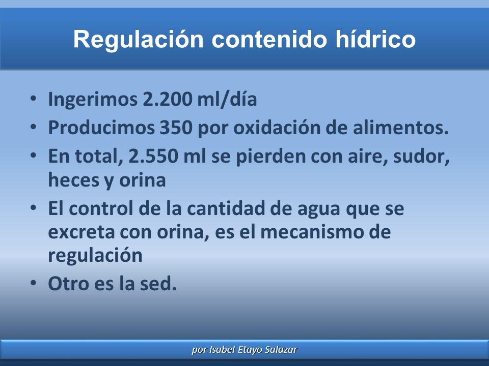 Regulación contenido hídrico