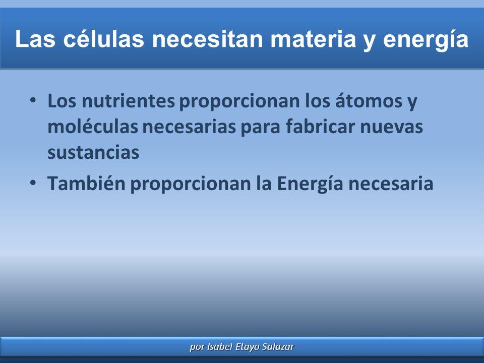 Las células necesitan materia y energía