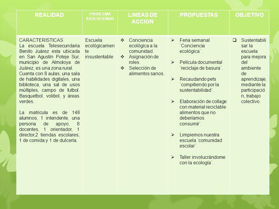 REALIDAD LINEAS DE ACCION PROPUESTAS OBJETIVO