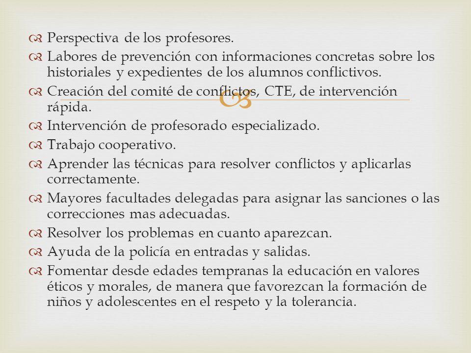 Perspectiva de los profesores.