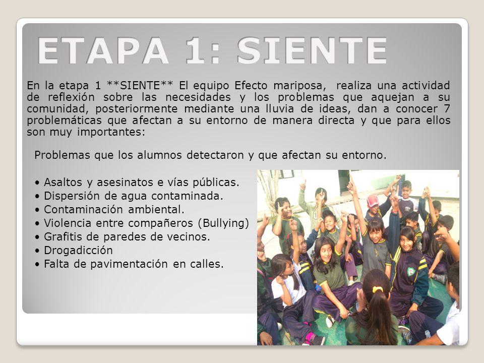 ETAPA 1: SIENTE
