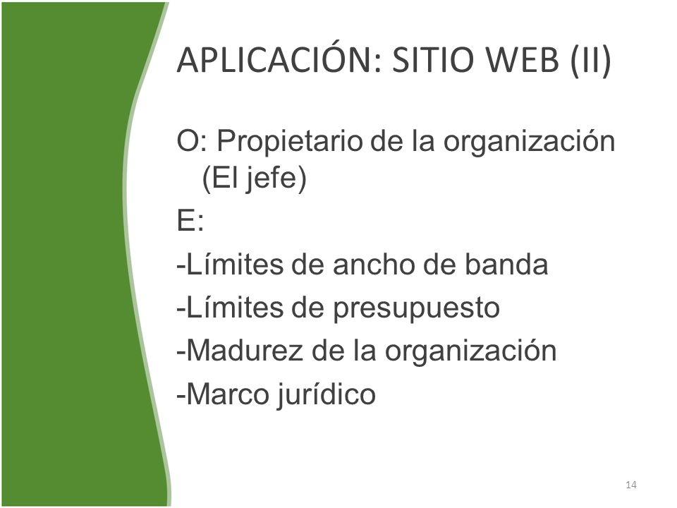 APLICACIÓN: SITIO WEB (II)