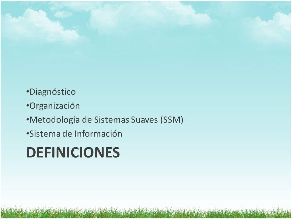 DEFINICIONES Diagnóstico Organización
