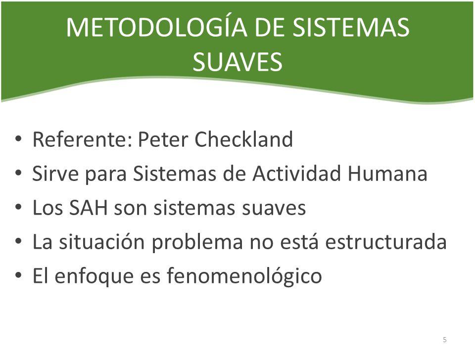 METODOLOGÍA DE SISTEMAS SUAVES