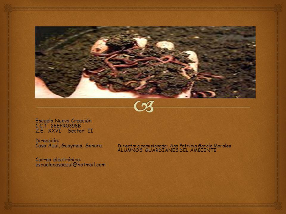 Escuela Nueva Creación C.C.T. 26EPR0398B Z.E. XXVI Sector: II