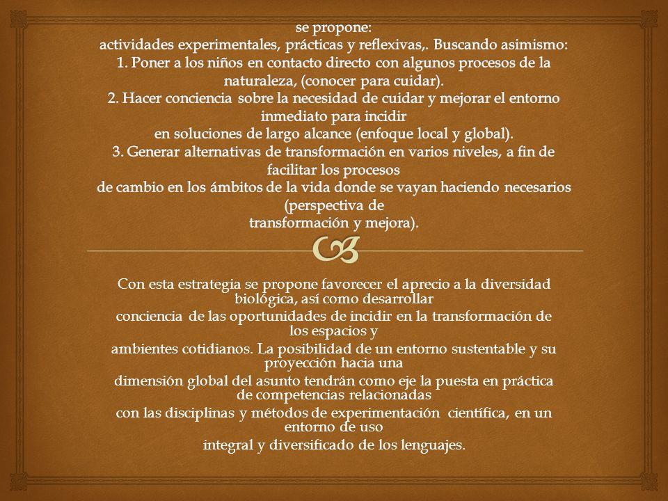 integral y diversificado de los lenguajes.