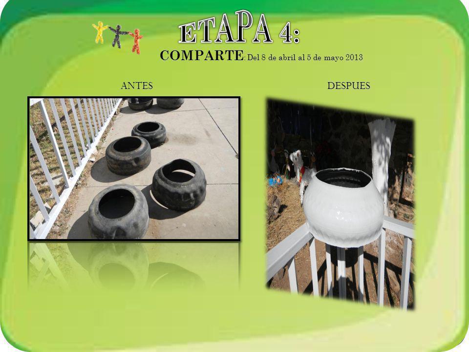ETAPA 4: COMPARTE: Del 8 de abril al 5 de mayo 2013 ANTES DESPUES