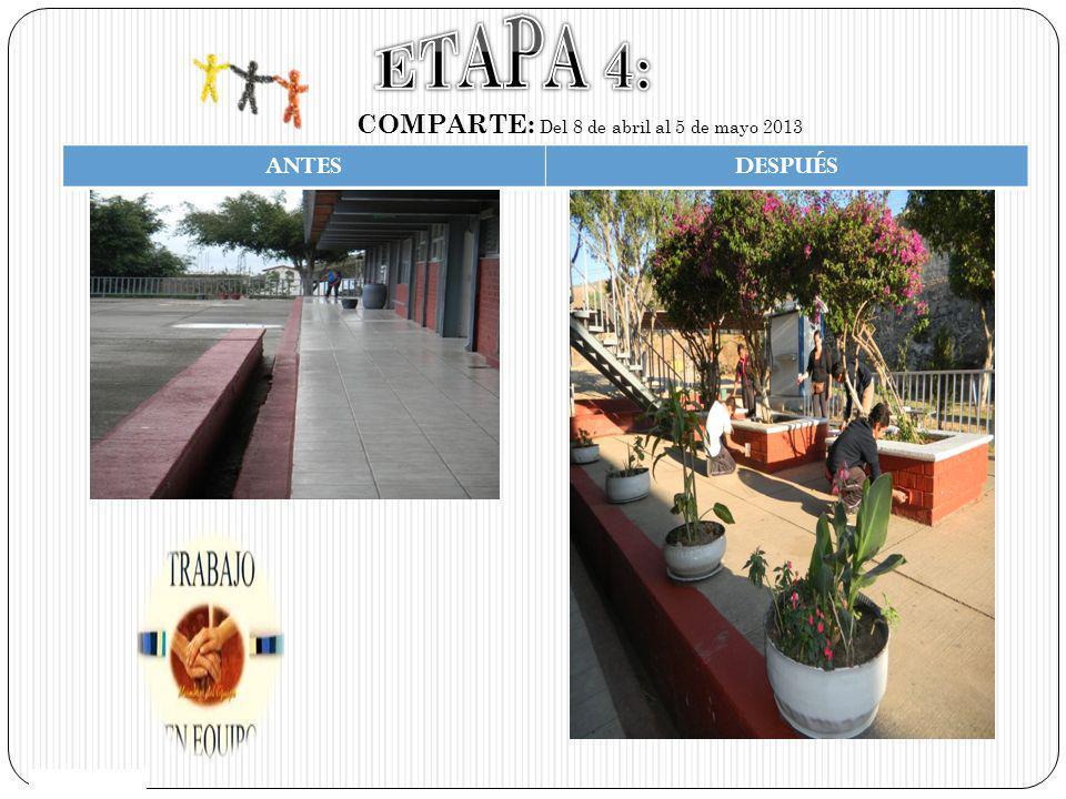 ETAPA 4: COMPARTE: Del 8 de abril al 5 de mayo 2013 ANTES DESPUÉS