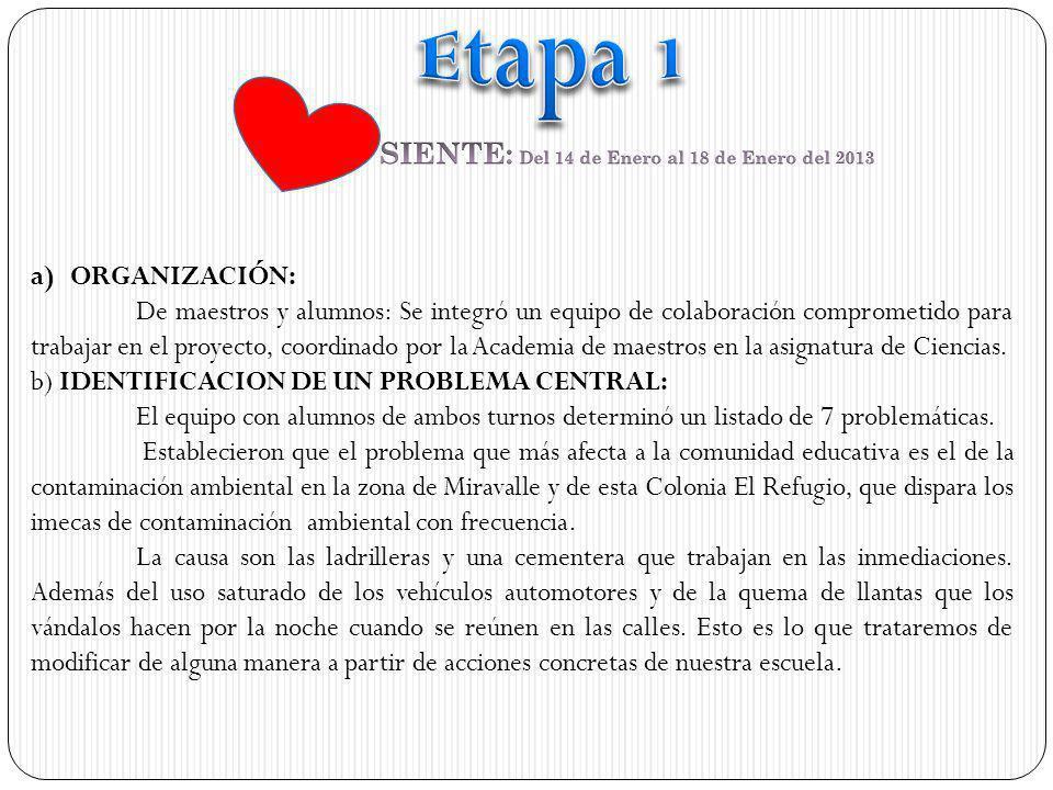 SIENTE: Del 14 de Enero al 18 de Enero del 2013