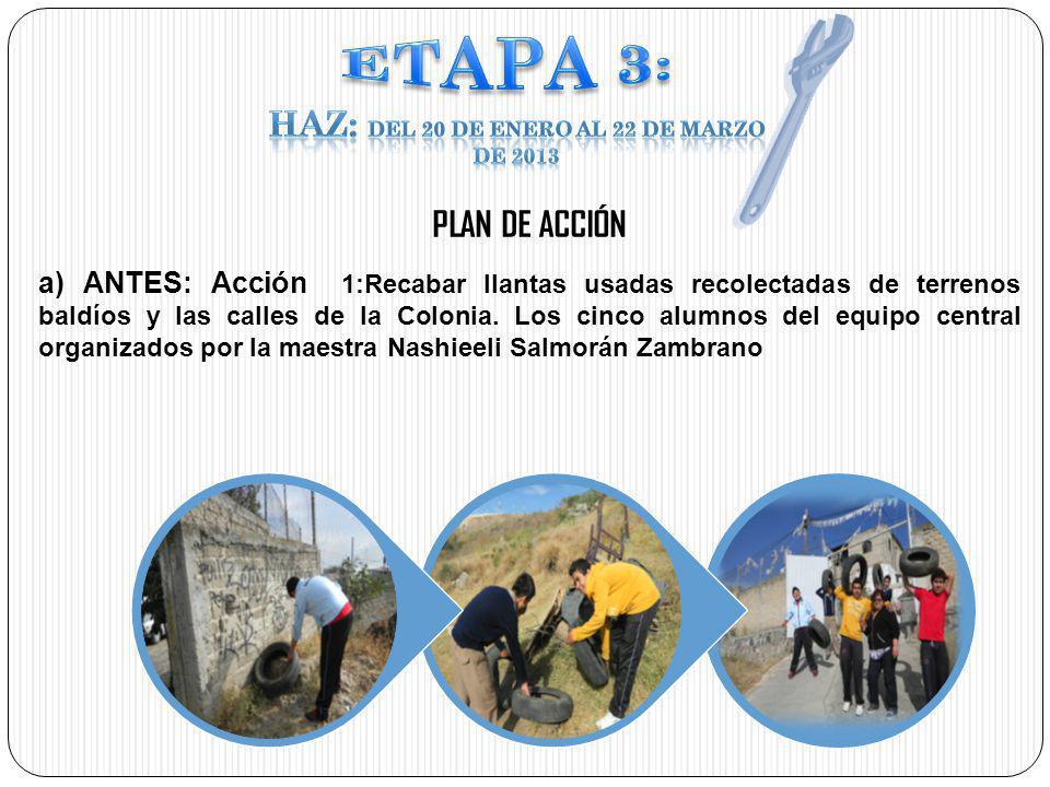 HAZ: Del 20 de enero al 22 de marzo de 2013