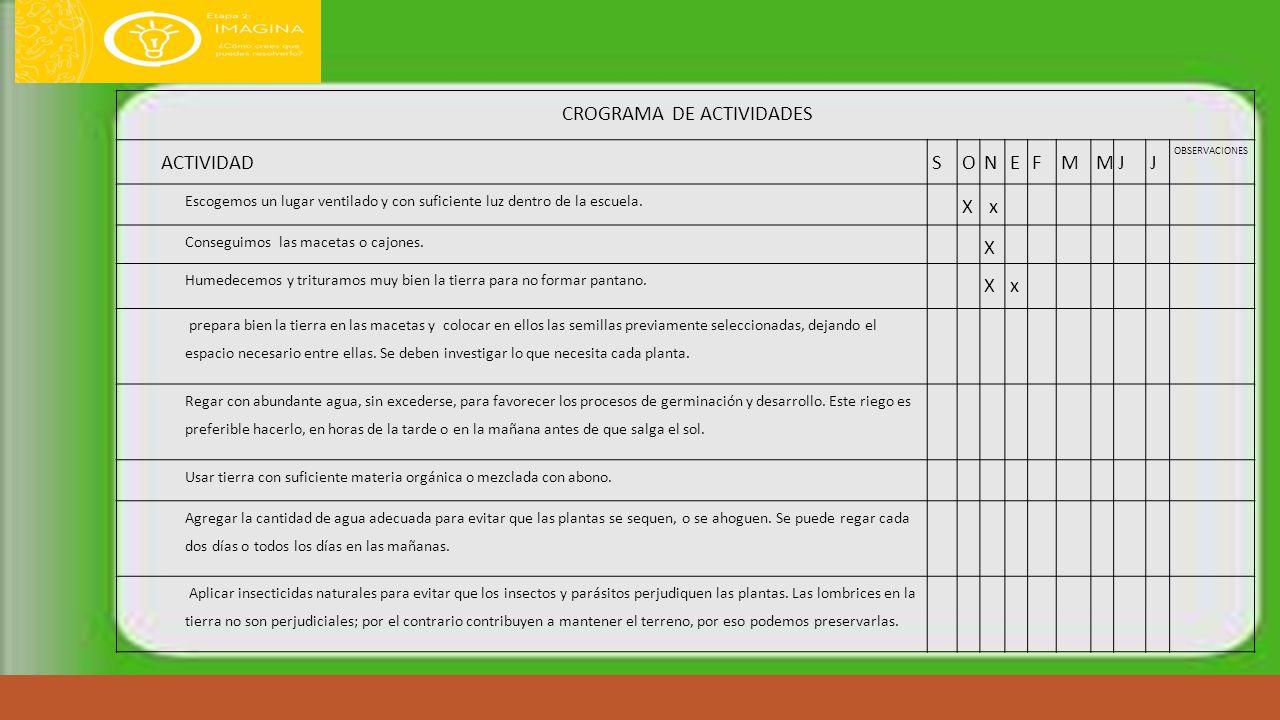 CROGRAMA DE ACTIVIDADES
