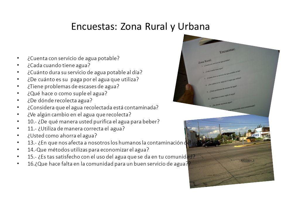 Encuestas: Zona Rural y Urbana