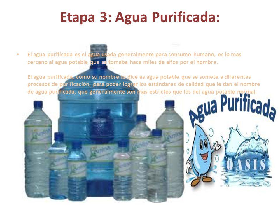 Etapa 3: Agua Purificada: