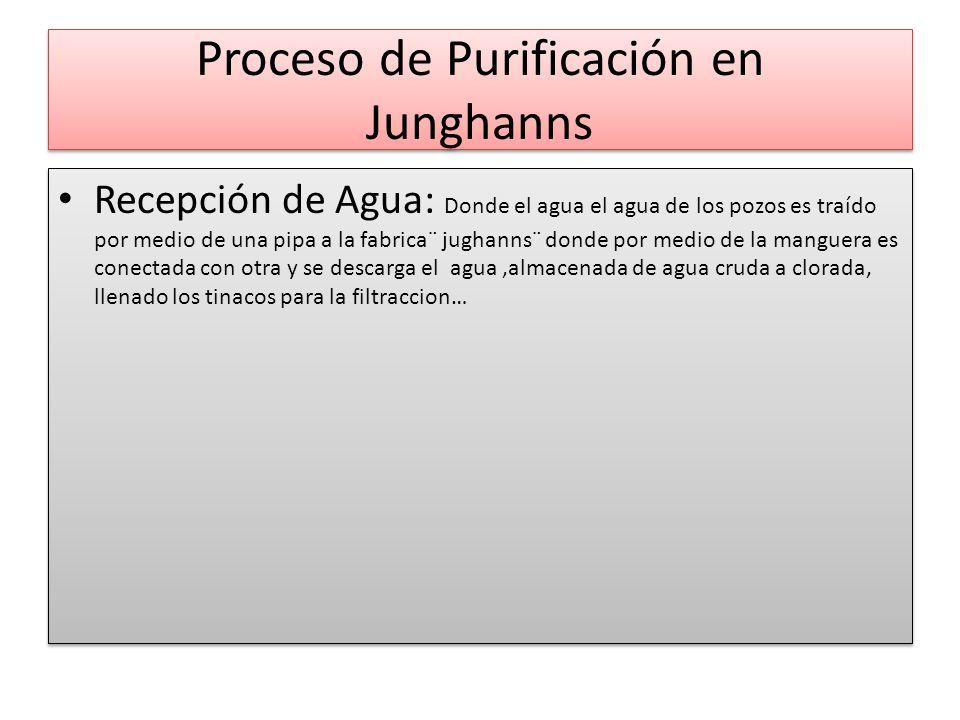 Proceso de Purificación en Junghanns