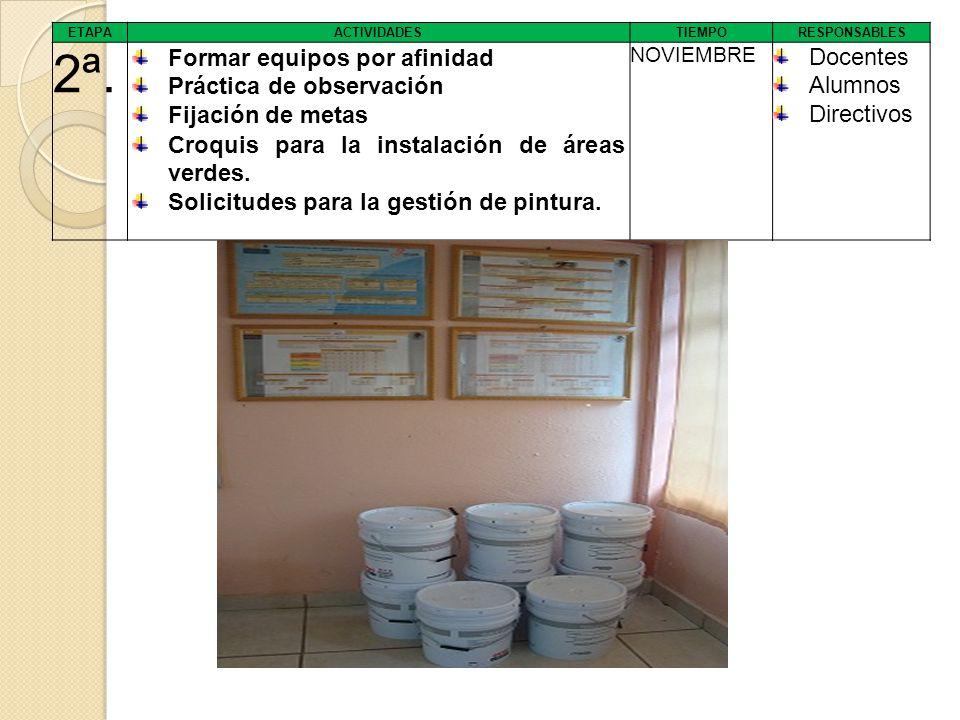 2ª. Formar equipos por afinidad Práctica de observación