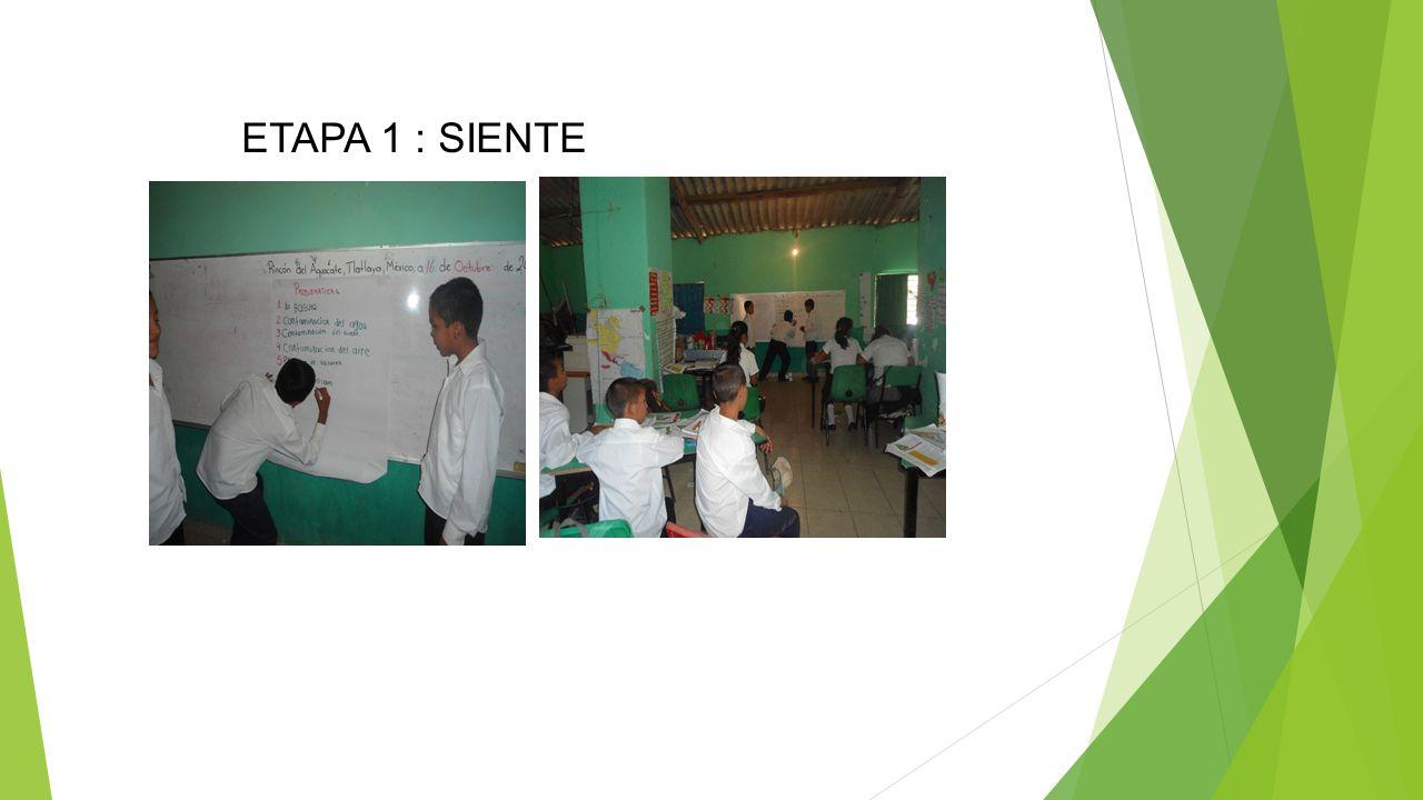 ETAPA 1 : SIENTE
