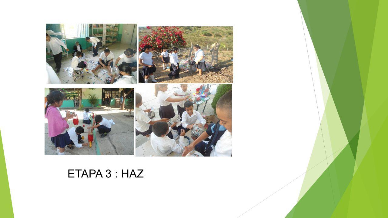 ETAPA 3 : HAZ