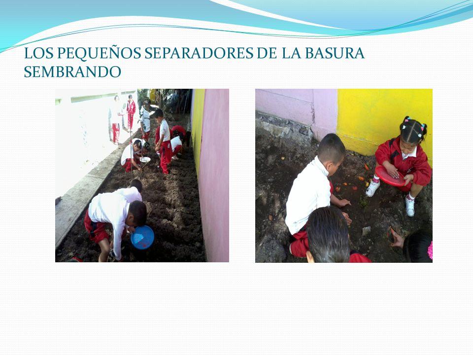 LOS PEQUEÑOS SEPARADORES DE LA BASURA SEMBRANDO