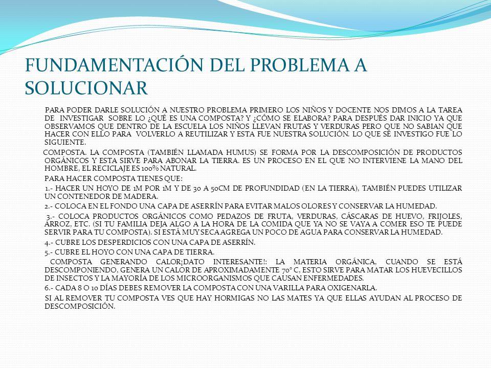 FUNDAMENTACIÓN DEL PROBLEMA A SOLUCIONAR