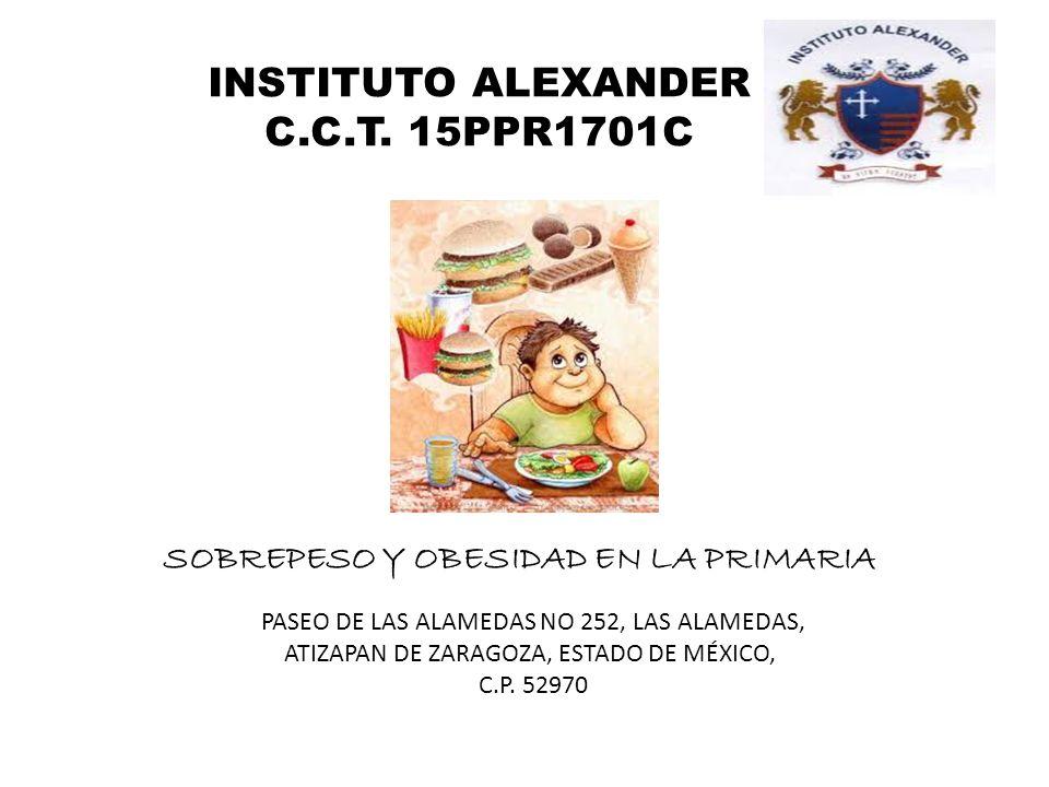 INSTITUTO ALEXANDER C.C.T. 15PPR1701C