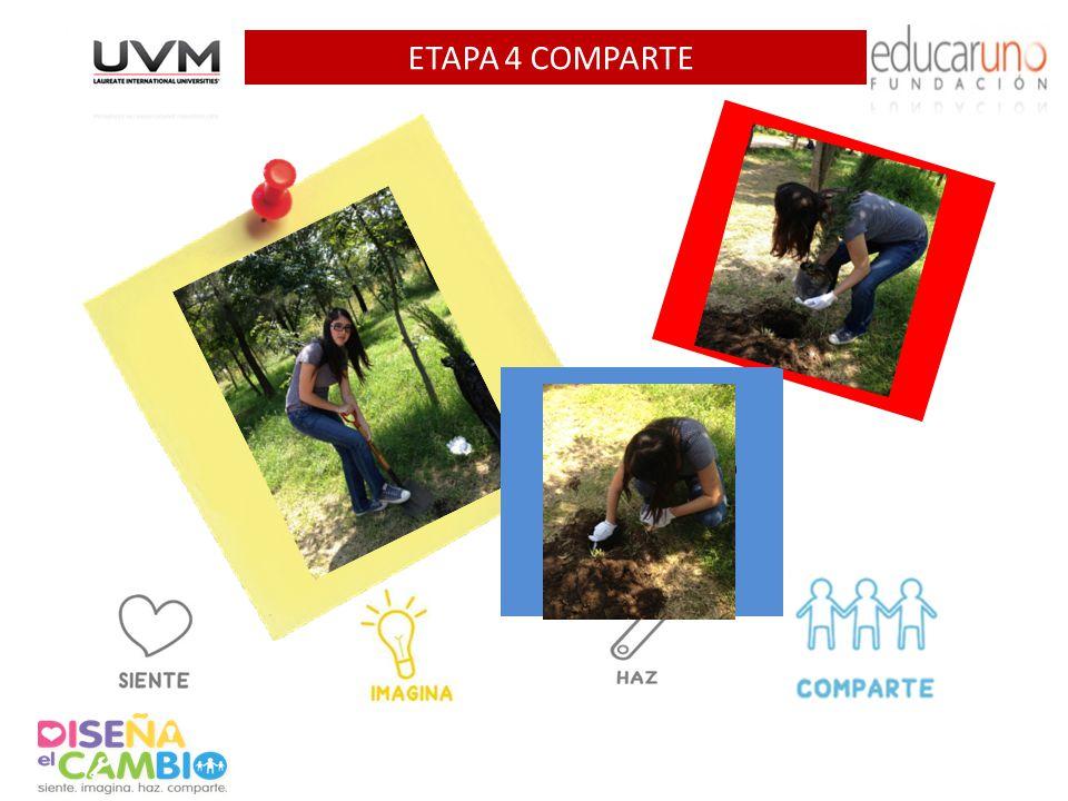 ETAPA 4 COMPARTE Agrega 1 foto AQUI Agrega 1 foto AQUI Agrega 1 foto AQUI