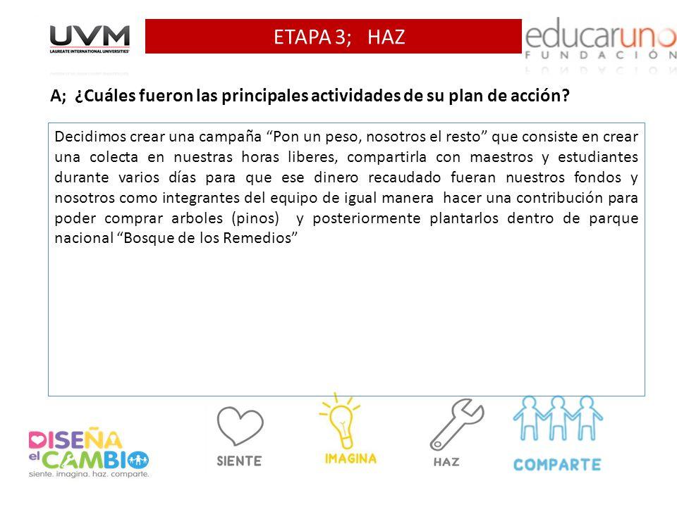 ETAPA 3; HAZ A; ¿Cuáles fueron las principales actividades de su plan de acción