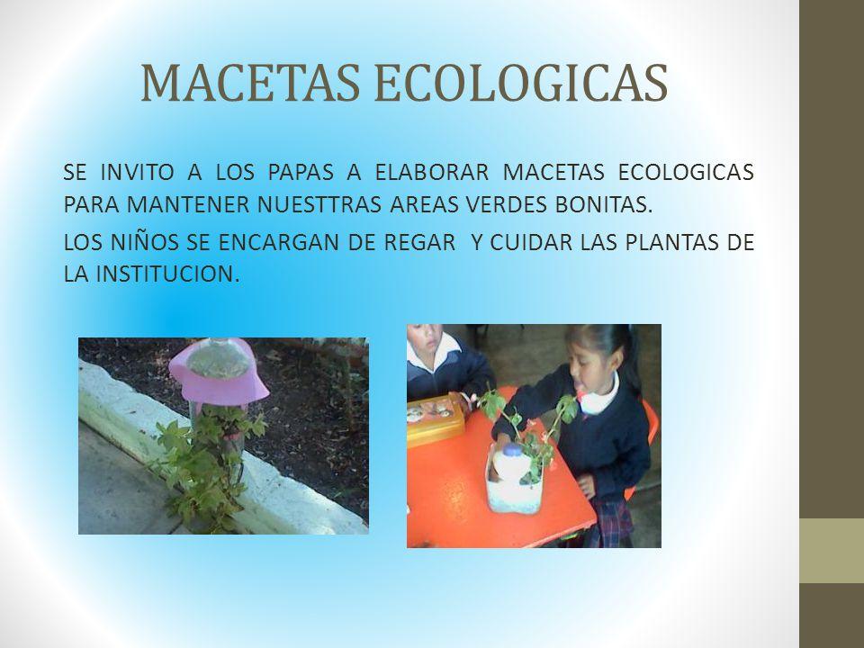 MACETAS ECOLOGICAS