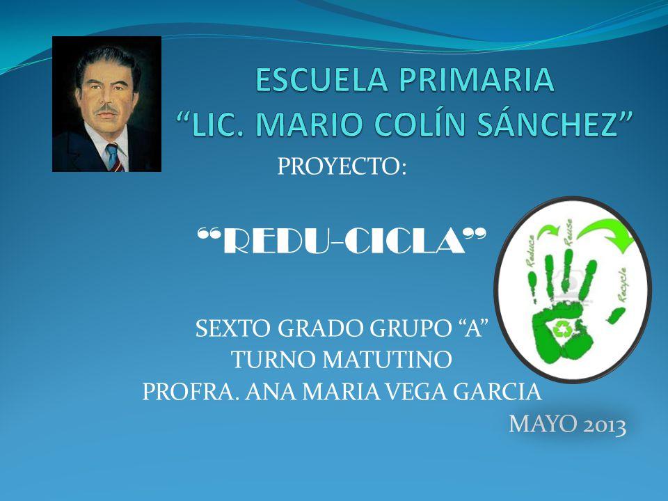 ESCUELA PRIMARIA LIC. MARIO COLÍN SÁNCHEZ