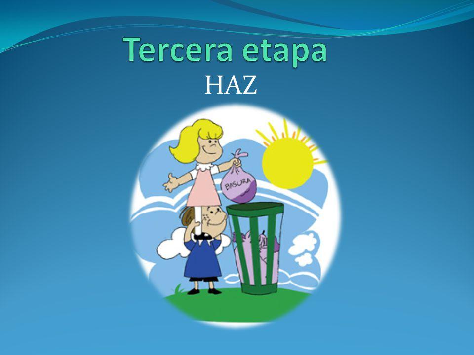Tercera etapa HAZ