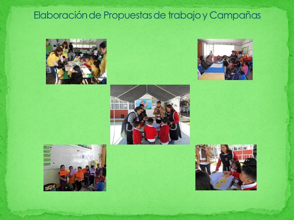 Elaboración de Propuestas de trabajo y Campañas