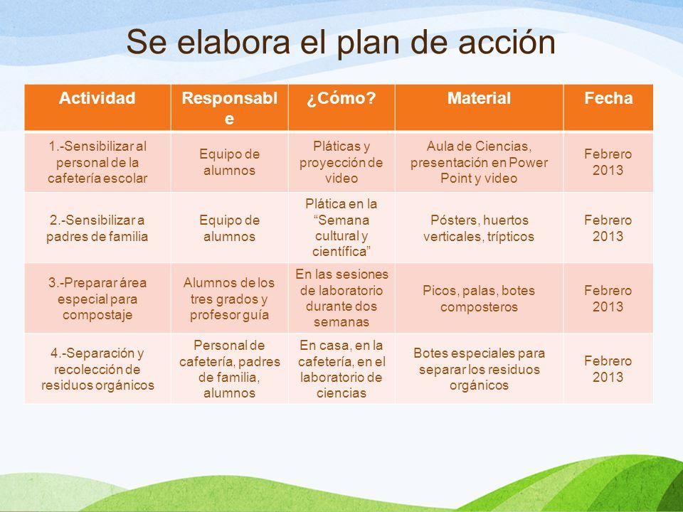 Se elabora el plan de acción