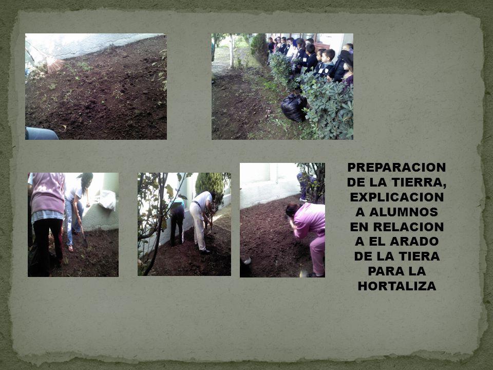 PREPARACION DE LA TIERRA, EXPLICACION A ALUMNOS EN RELACION A EL ARADO DE LA TIERA PARA LA HORTALIZA