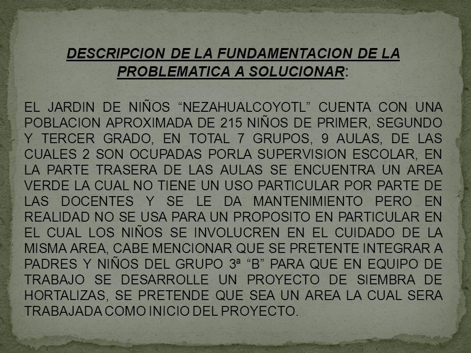 DESCRIPCION DE LA FUNDAMENTACION DE LA PROBLEMATICA A SOLUCIONAR: