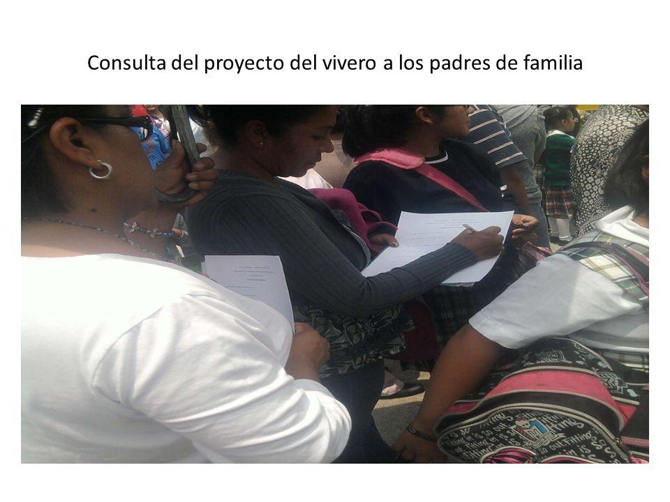 Consulta del proyecto del vivero a los padres de familia