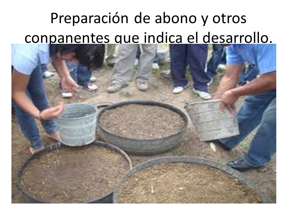 Preparación de abono y otros conpanentes que indica el desarrollo.