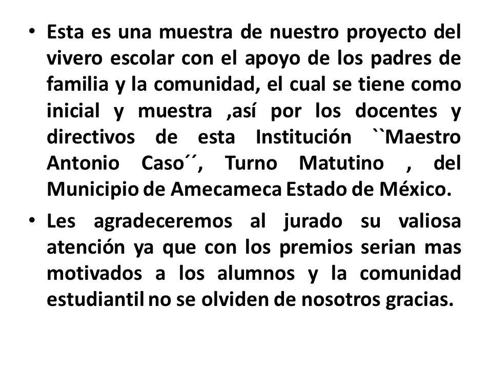 Esta es una muestra de nuestro proyecto del vivero escolar con el apoyo de los padres de familia y la comunidad, el cual se tiene como inicial y muestra ,así por los docentes y directivos de esta Institución ``Maestro Antonio Caso´´, Turno Matutino , del Municipio de Amecameca Estado de México.