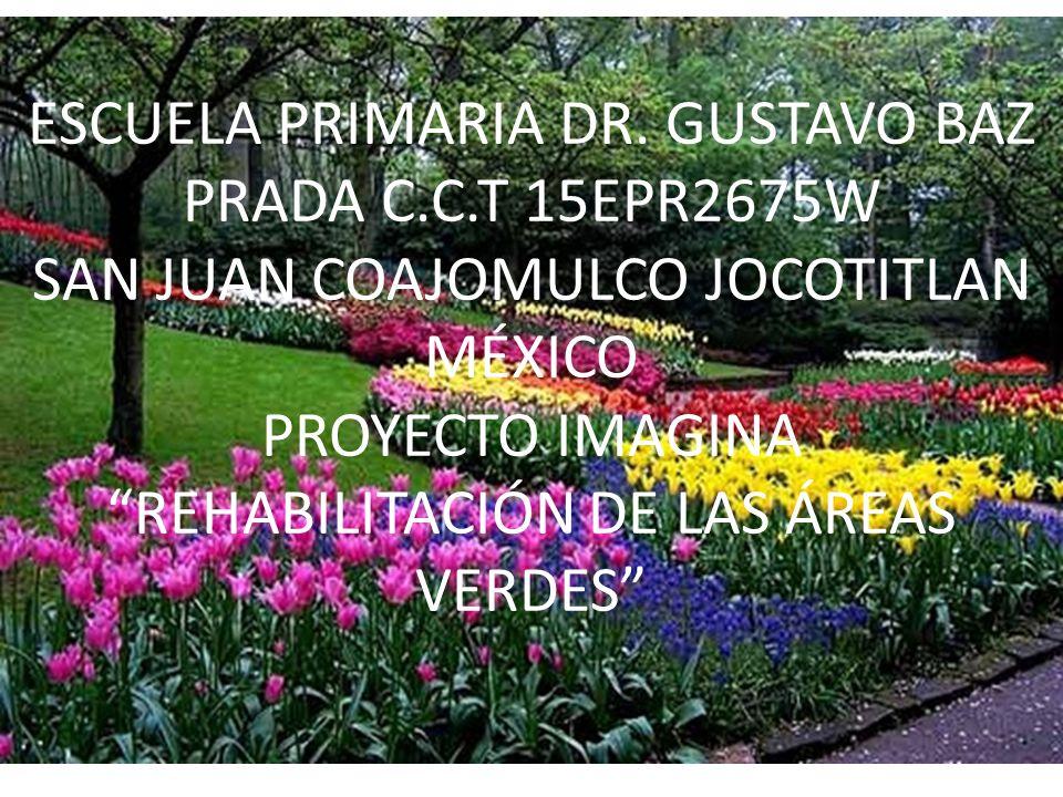 ESCUELA PRIMARIA DR. GUSTAVO BAZ PRADA C. C