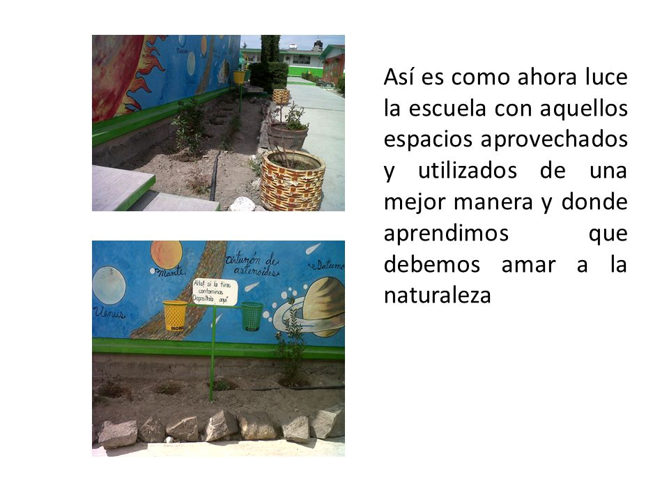 Así es como ahora luce la escuela con aquellos espacios aprovechados y utilizados de una mejor manera y donde aprendimos que debemos amar a la naturaleza