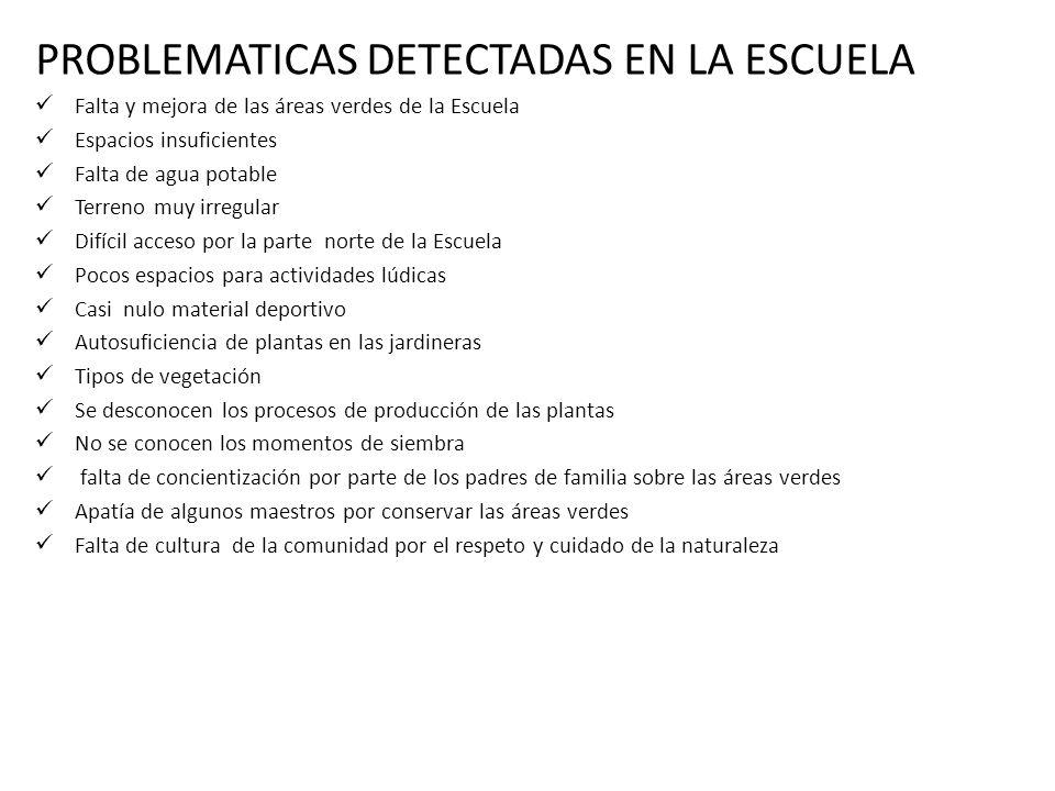 PROBLEMATICAS DETECTADAS EN LA ESCUELA