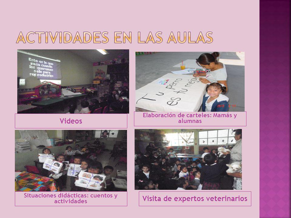 Actividades en las aulas