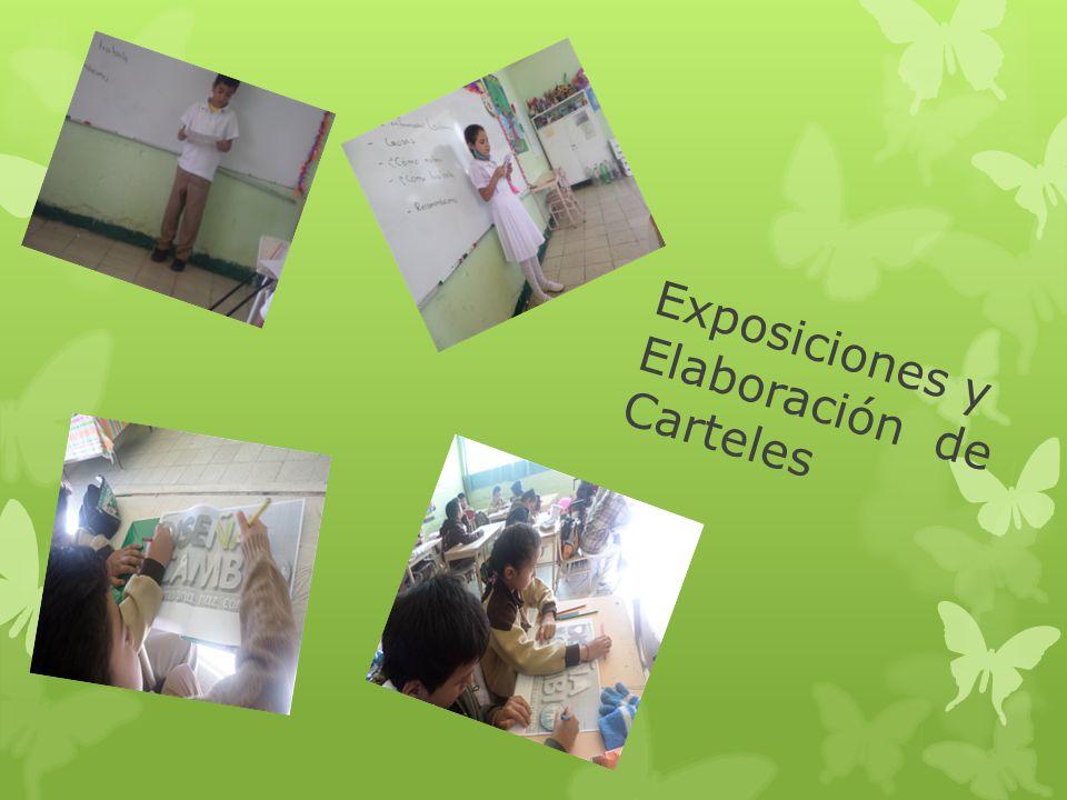 Exposiciones y Elaboración de Carteles