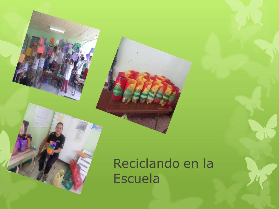 Reciclando en la Escuela