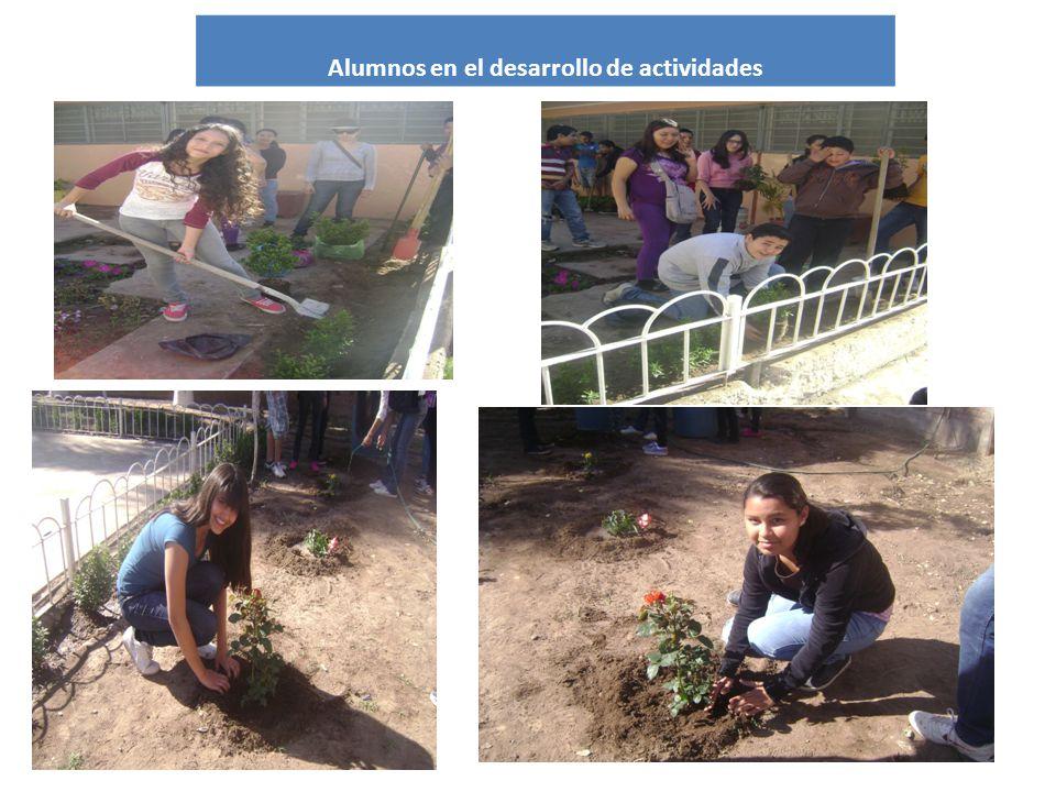 Alumnos en el desarrollo de actividades